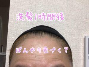 オーガニックヘアタトゥー使用後